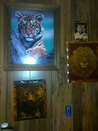 three tiger and one lion posters Marietta, 30060