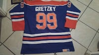 blue and red Gretzky 99 jersey