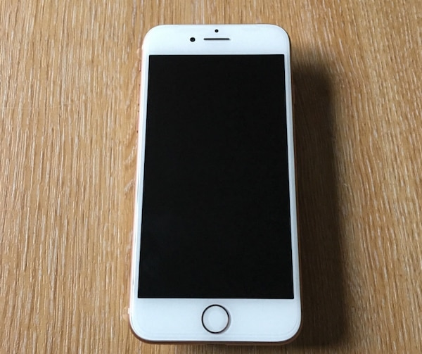 silver iPhone 6 with case