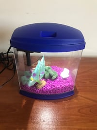 Betta fish tank West Des Moines, 50266