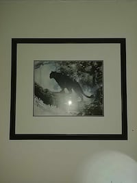 Black panther Beautiful picture 28 x 33 in Mississauga, L5R 2A4