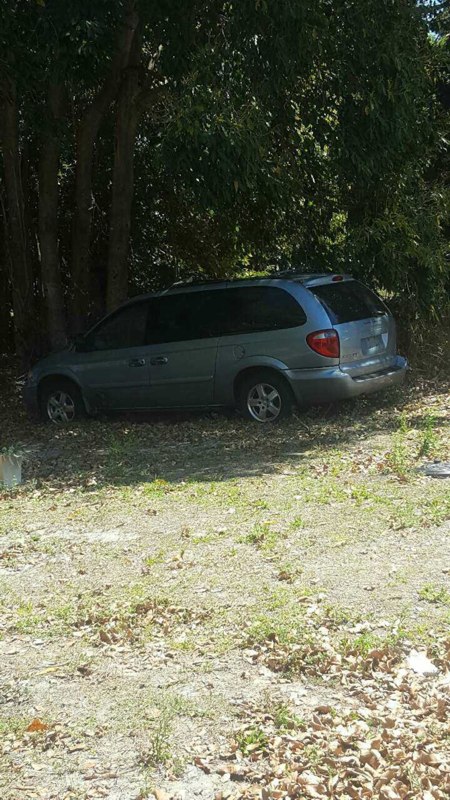 silver minivan - East Fort Myers
