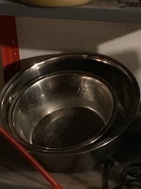 Food and water dish for dogs