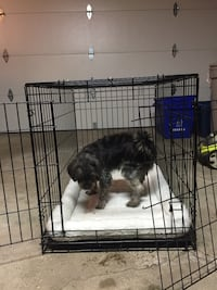 Pet crate with liner and bedding Markham, L3P 2P7