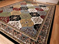 Large 8x11 brand new rug Silver Spring, 20902