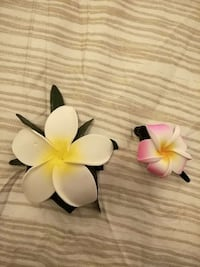 2 tropical flowers hairpin