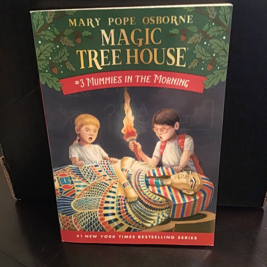 Magic Treehouse book