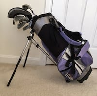purple and black golf bag with golf clubs Sterling, 20165