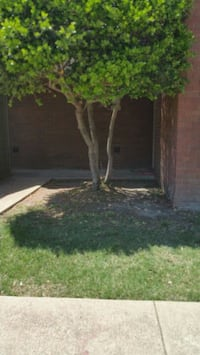 APT For Rent 2BR 2BA North Richland Hills