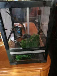 "They are 12"" x 12"" x 18"" terrarium reptile Thorold, L2V 3M4"