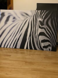 Zebra Canvas Golden Valley, 55422