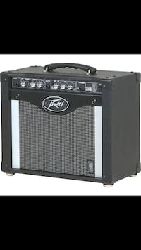 Peavy Amp Selkirk, R1A