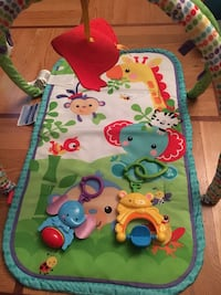 Fisher price play mat Germantown, 20874