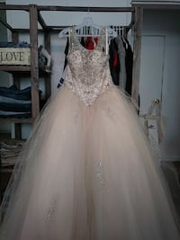 women's champagne  gown size 12