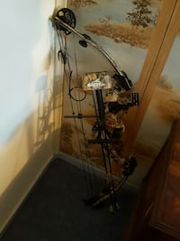 Hoyt  compound bow Bradford, 16701