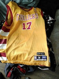 orange and yellow Cleveland Cavaliers 17 jersey