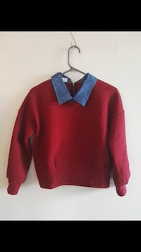 boy's red and blue collared sweater