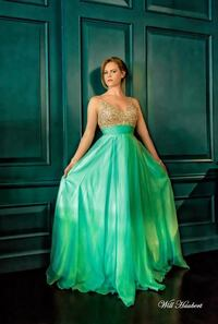 Ball Gown / Prom Dress Centreville