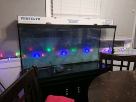 60g fishtank with stand and filter