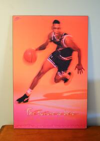 ANFERNEE 'PENNY' HARDAWAY POSTER Grimsby, L3M 5G8