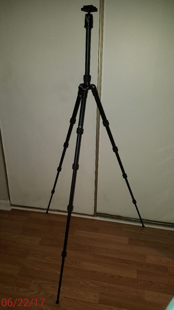 Benro A1690T with BH0 Head travel tripod