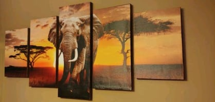 Framed Canvas Wall Pictures.