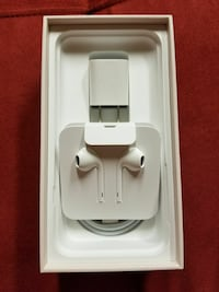 Apple earbounds + apple charger