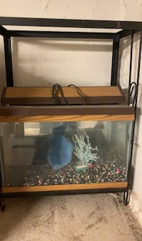 Fish tank and stand 10 gollon