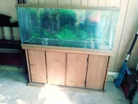 55 gallon fish tank with extras and pumps Cleburne, 76031