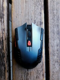Everest/Go Mobile Wireless Mouse