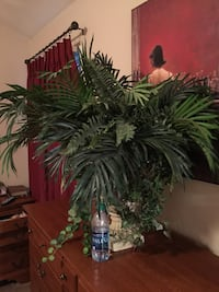 Large palm in lovely vase. Artificial greenery. Water bottle shows size of plant   Virginia Beach, 23453