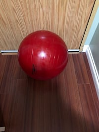 Red Thera-Band Professional Exercise Ball Surrey, V3T 5L7