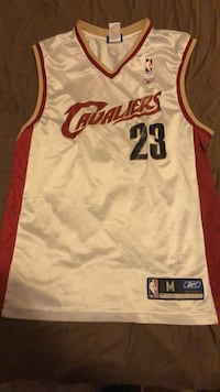 white and red Cleveland Cavaliers Lebron James jersey Winnipeg, R3T 1R7
