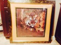 Beautiful, must see, 3ftx3ft Tiger Pic Elizabethton, 37643