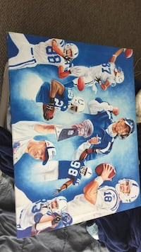 Indianapolis Colts printed board 903 mi