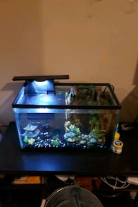 Aquarium COMES WITH EVERYTHING INCLUDING FISH