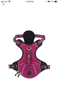 Kong harness pink and green as seen on picture size M Mississauga, L5G 3B7
