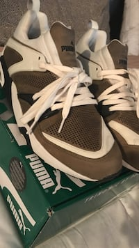 SIZE 12 PUMAS WORN ONCE.MINT CONDITION Mississauga, L5L 5V2