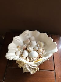 Decor sea shell