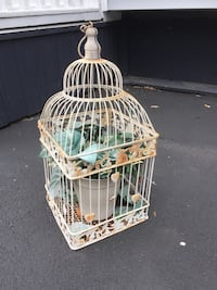 Decorative bird cage. Toronto, M8V