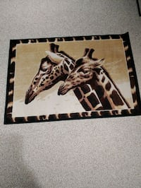 """Area rug - 57"""" x 39"""" Whitby, L1P 1N8"""