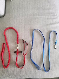 Cat leash/Harness - Blue 5ft - Red 4ft