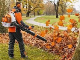 Leafs Cleanup Services