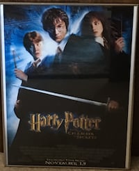 Harry Potter & the Chamber of Secrets framed poster Silver Spring, 20906