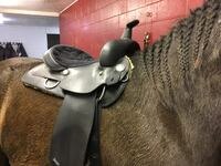 Winter Western Synthetic Saddle Abbotsford, V2S 1Z8
