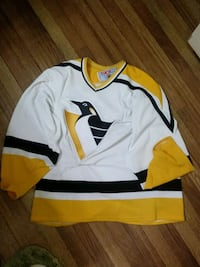 Nhl hockey jersey Amarillo, 79109