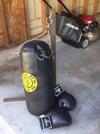 black and red Everlast punching bag Plainfield, 60544