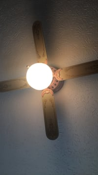 Ceiling fan and light Akron, 44306
