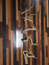 Drift wood for reptiles Ooltewah