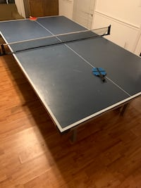 Ping pong table